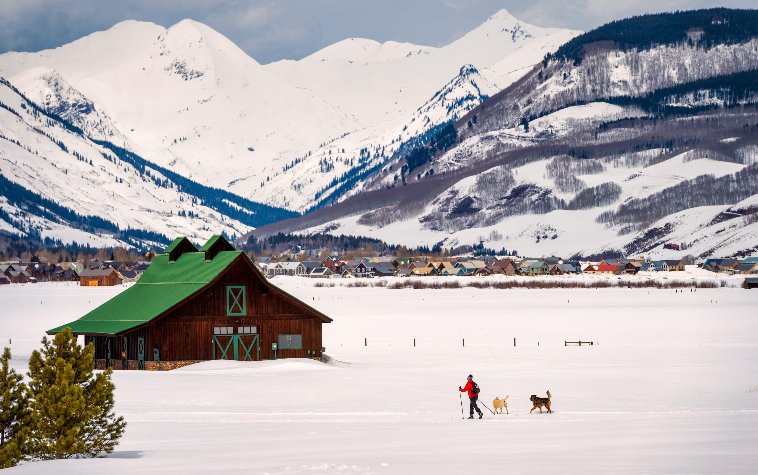Skier out with dogs on Town Ranch trails with Paradise Divide background