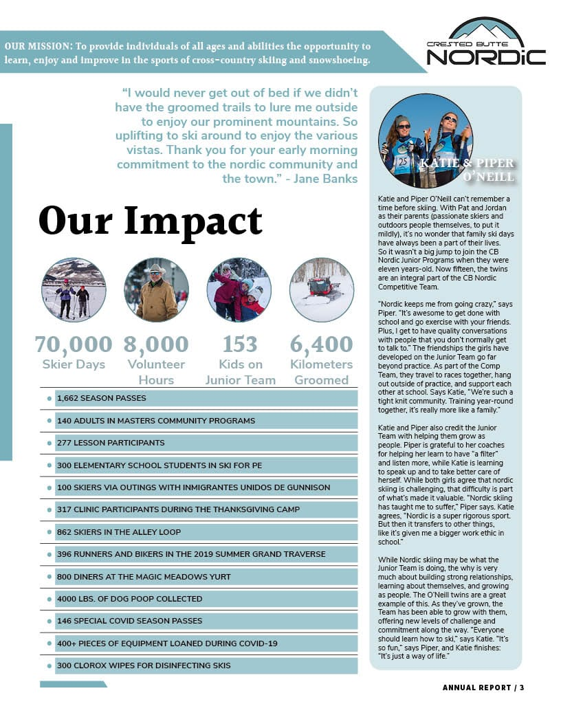 Annual Report 2020 page 3