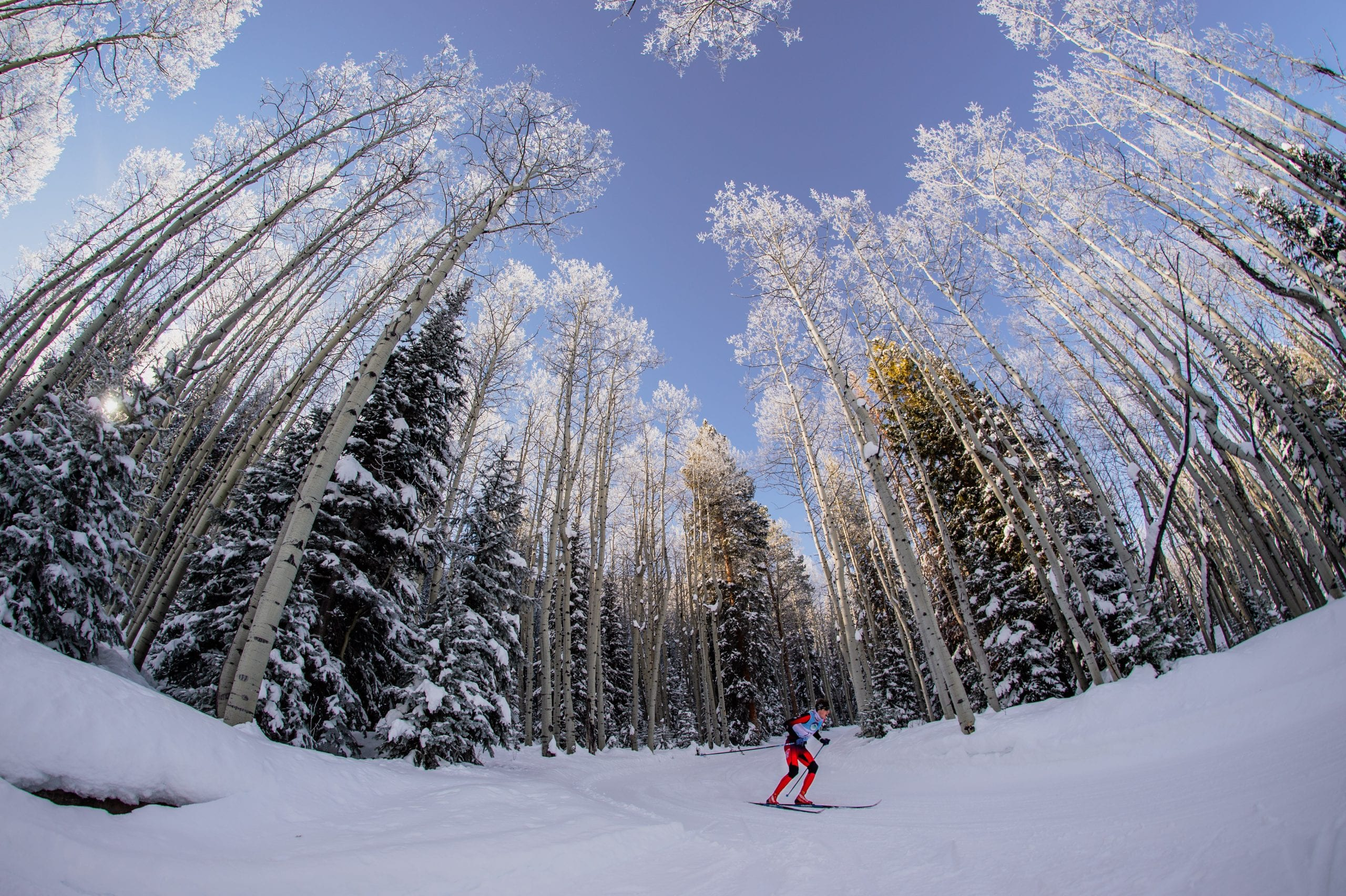 Racer navigating a downhill section on a Crested Butte Nordic race course
